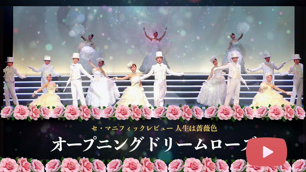 公演チケット販売中!<br>オープニングドリームローズ【動画】